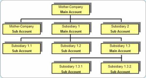 Cash & Liquidity Management